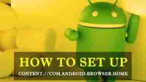content-com.android.browser.home